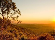 Byron Bay Eco Tours