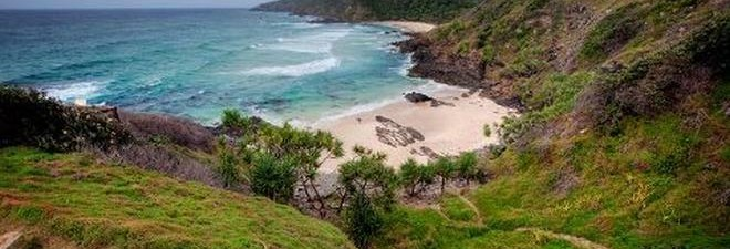 Our Byron Bay Caravan Park's Best Kept Bush Walking Secrets