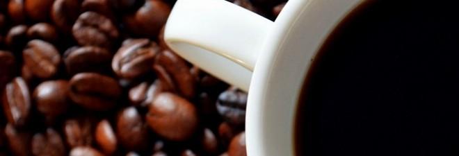 Best Kept Secret: Byron Bay's Hinterland Produces Amazing Coffee