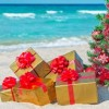 10 Easy Christmas Camping Hacks at Byron Bay