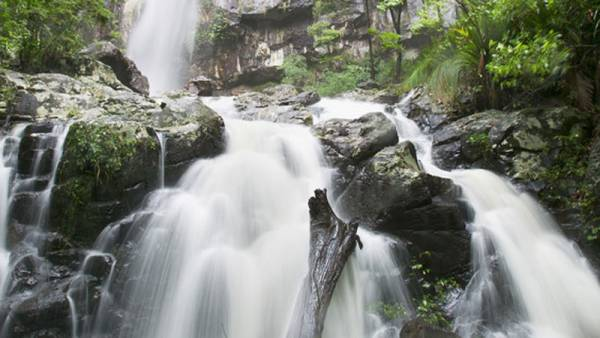Stunning local waterfall. Image source: www.nationalparks.nsw.gov.au