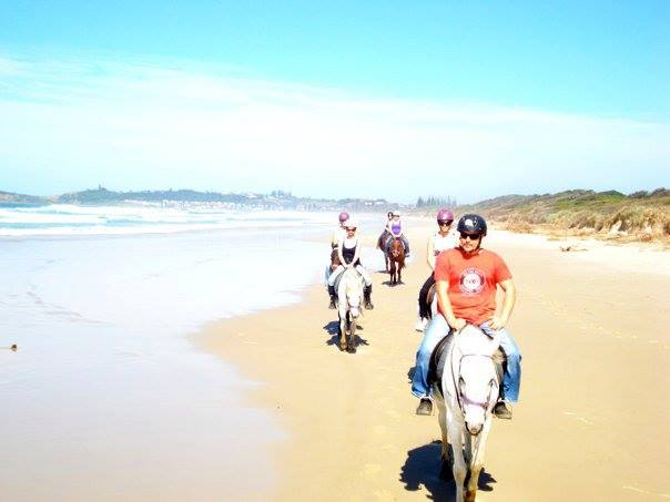 Seahorses - horse riding on the beach in Byron Bay
