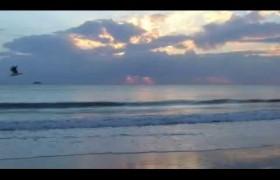Walk The Byron Coast – Part 1