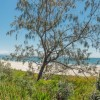 Byron Beach Cafe: Best Tourism Restaurant