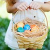 Easter Activities in Byron Bay