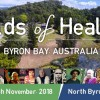 What's On? Fields of Healing 24-25 November
