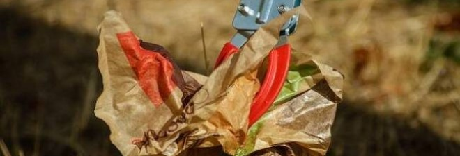 10 Tips For Keeping Your Campsite Clean & Tidy